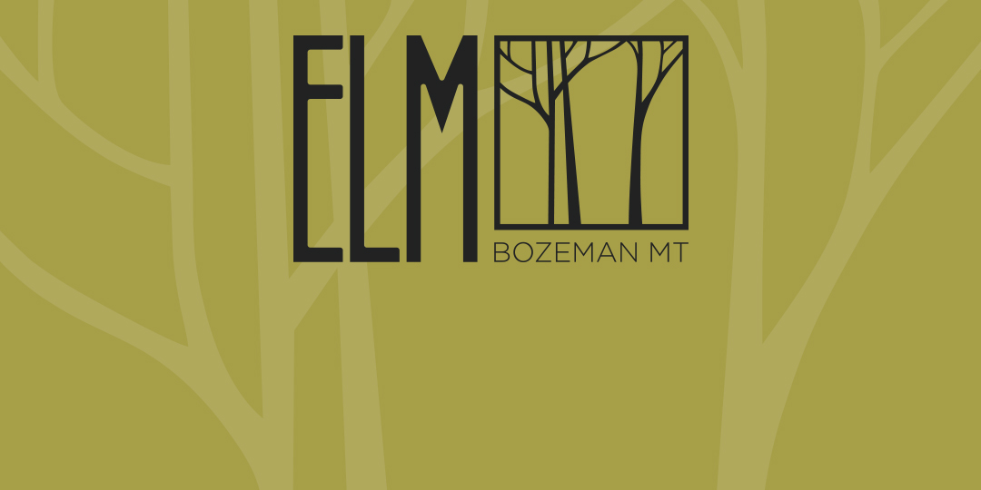 Introducing Bozeman Montana's concert venue the ELM. A venue by Logjam Presents Coming winter 2020